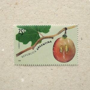 2000Argentina001
