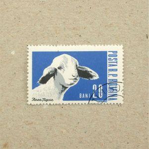 1962Romania004