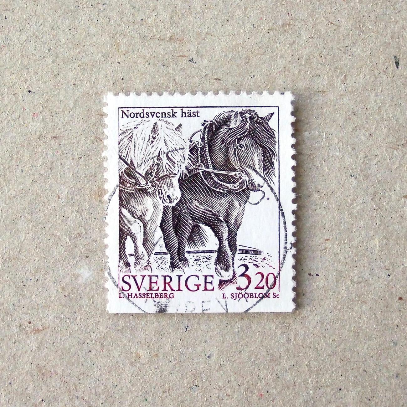 1994Sweden003